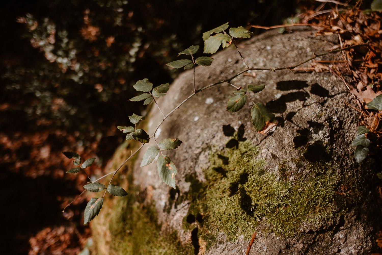 photographies d'un créateur & designer de montres éco-durables, sustainable tool watches, à Clisson, pays de la loire